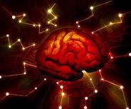 Brain firing