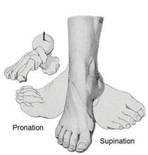 腳在中位、外旋及內旋