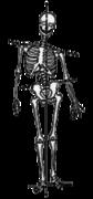 不平衡的骨骼框架